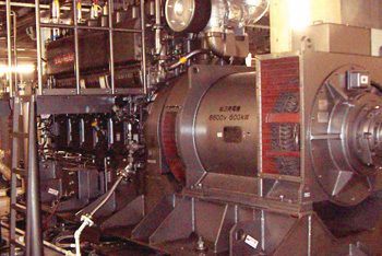 Biogas Micro Cogeneration System: